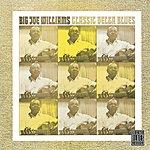 Big Joe Williams Classic Delta Blues