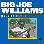 Big Joe Williams Walking Blues