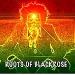 Jamo Roots Of Blackrose