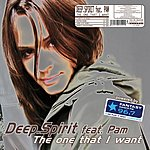 Deep Spirit The One That I Want (7-Track Single)