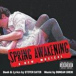 Duncan Sheik Spring Awakening: Original Broadway Cast Recording