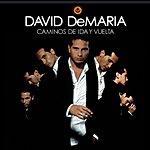 David DeMaria Caminos De Ida Y Vuelta