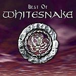 Whitesnake Best Of Whitesnake