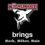 Brings Hoch, Höher, Haie (Single)