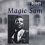 Magic Sam Magic Sam