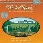 Robert Stolz Wiener Musik, Vol.2