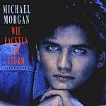 Michael Morgan Wie Fackeln Im Sturm