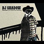 DJ Shadow This Time (I'm Gonna Dub It My Way) (Single)