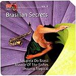 Ros Pepito Brasilian Secrets, Vol.7
