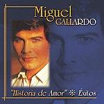 Miguel Gallardo Historia De Amor: Éxitos
