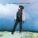Taj Mahal Giant Step