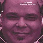 DJ Sneak Essential Sneak, Vol.1 (2-Track Single)