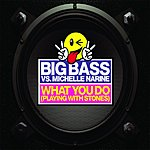 Big Bass What You Do (Playing With Stones) (Remix Single)