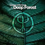 Deep Forest Essence Of The Forest By Deep Forest
