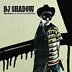 DJ Shadow This Time/Love, Love