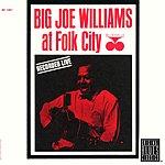 Big Joe Williams At Folk City (Remastered)