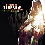 Carlo Gesualdo Tenebrae Responses For Good Friday