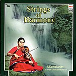 A. Kanyakumari Strings Of Harmony: Violin On 3 Octaves