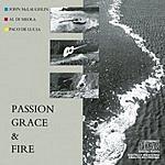 John McLaughlin Passion, Grace & Fire