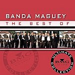Banda Maguey The Best Of Banda Maguey: Ultimate Collection