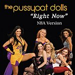 The Pussycat Dolls Right Now (N.B.A. Version)