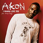 Akon I Wanna Love You (Single/Clean Version)