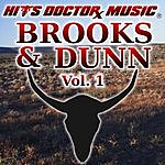 Hits Doctor Music Presents Done Again (In The Style Of Brooks & Dunn): Brooks & Dunn, Vol.1