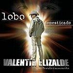 Valentin Elizalde Lobo Domesticado (International Version)