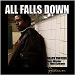 Black Panther All Falls Down (3-Track Maxi-Single)