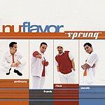 Nu Flavor Sprung (6-Track Maxi-Single)