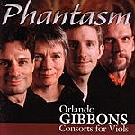 Phantasm Consorts For Viols