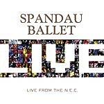 Spandau Ballet Live At The NEC