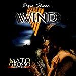 Mato Grosso Pan Flute Wind