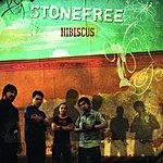Stonefree Hibiscus