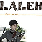 Laleh Call On Me (Single)