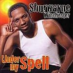 Shurwayne Winchester Under My Spell