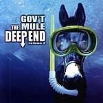 Gov't Mule The Deep End, Vol.2