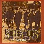 Street Dogs Savin' Hill