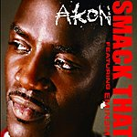 Akon Smack That (NBA Version)