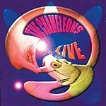 The Chameleons UK Live At The Academy, Vol.2