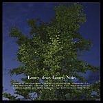Loney, Dear Loney, Noir