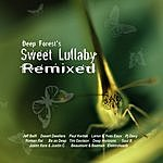 Deep Forest Sweet Lullaby (Remixed)