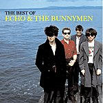 Echo & The Bunnymen The Very Best Of Echo & The Bunnymen: More Songs To Learn And Sing