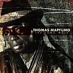 Thomas Mapfumo The Long Walk