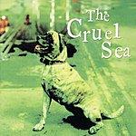 The Cruel Sea Three Legged Dog