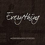 Stereo Fuse Everything (Radio Edit) (Single)