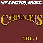 Hits Doctor Music Presents Done Again (In The Style Of Carpenters): Carpenters, Vol.1