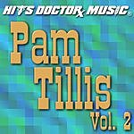 Hits Doctor Music Presents Done Again (In The Style Of Pam Tillis): Pam Tillis, Vol.2