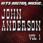 Hits Doctor Music Presents Done Again (In The Style Of John Anderson): John Anderson, Vol.1