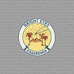 Bright Eyes Cassadaga (Deluxe Edition)